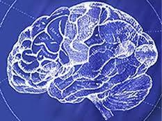 Schizophrenia Gene Discovered