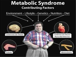 Too Much Fat Fuels Metabolic Syndrome