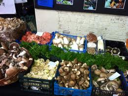 Exotic Mushrooms Best Source For Antioxidants