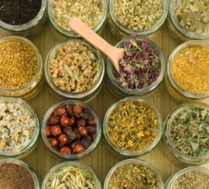 Knowledge Needed For Herbal Remedies