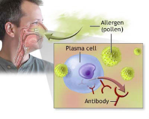 Tree Pollen Connected With Mood Disorders
