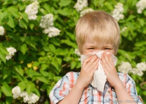 Allergies Not Only In Spring