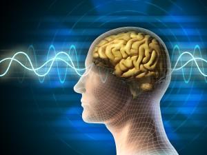 Avoid Brain Atrophy