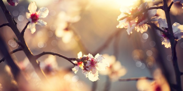 Sun Exposure Helps Many Symptoms