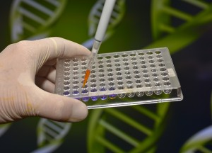 Genetic Screening For Better Health