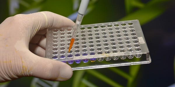 Genetic Screening For Better Health