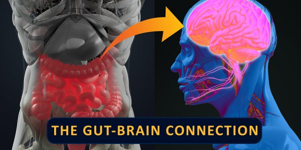 Bacterial Toxins Threatening The Brain