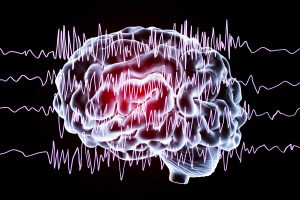 Two Proteins Responsible For Getting Epilepsy