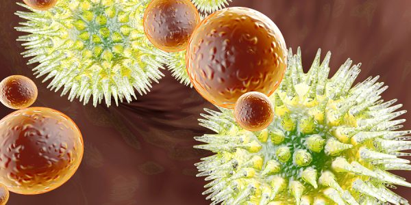 Adequate Vitamin D Level Strengthens the Immune System