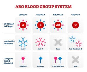 Blood Type Has Some Bearing on the Severity of Covid-19 Coronavirus
