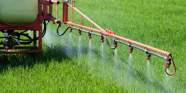 Which are the Most and Least Contaminated Crops